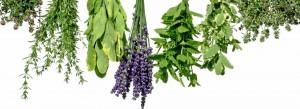 illóolaj, illóolajok, természetes gyógymódok, natúr olajok, aromalámpa, illóolaj keverékek